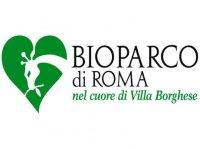 bioparco-fondazione